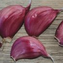 Creole Garlic, Red – 4 oz