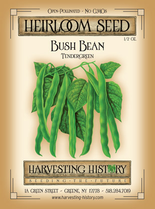 Shop Tendergreen And Other Seeds At Harvesting History