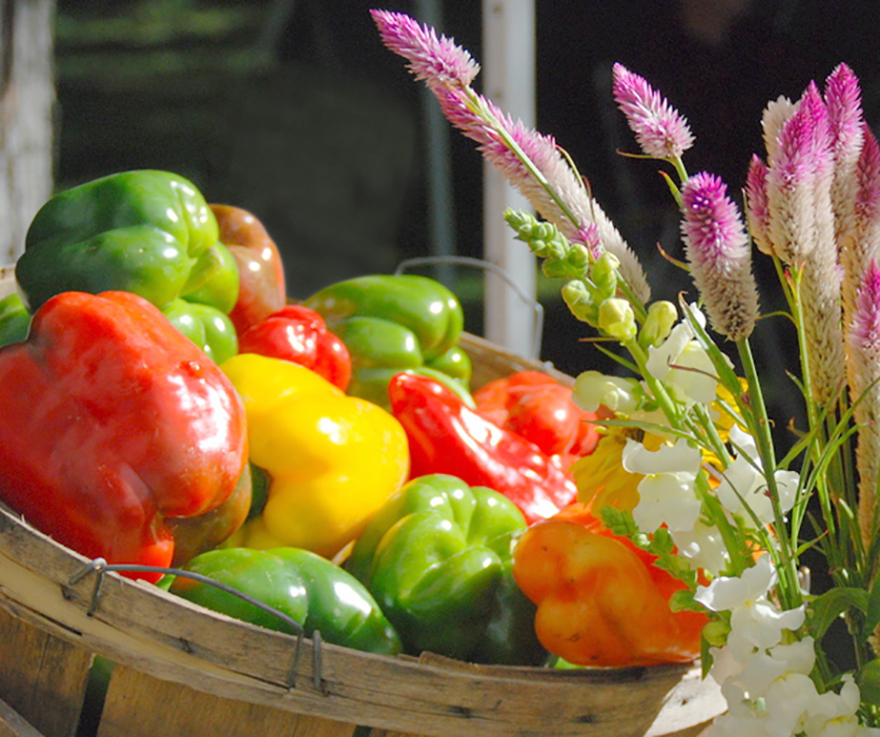Sweet, Beautiful and Nutritious - The Home Grown Pepper